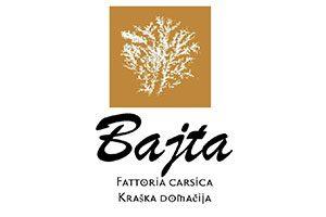 Logo-Bajta